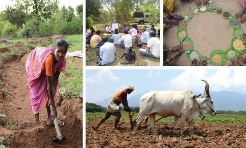 Click here to help Indian farmers with Permaculture.