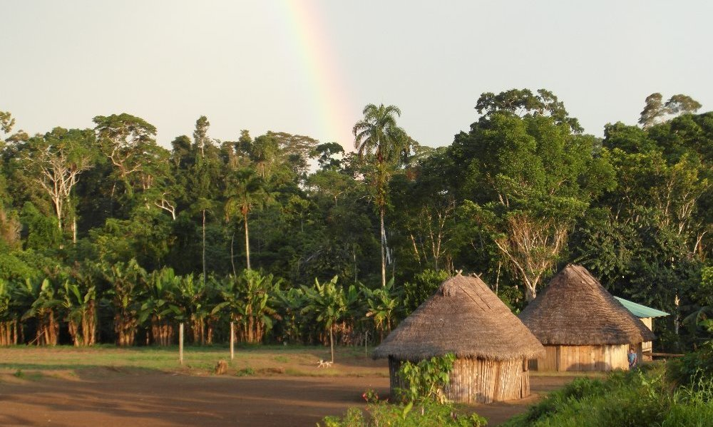 Want to help me get to Peru to volunteer in the Amazon ?!