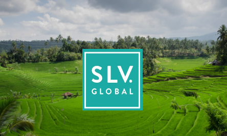 SLV Mental Health Placement in Bali