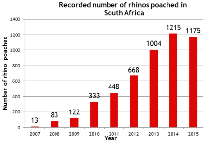 Rhino Poaching - Fact #1
