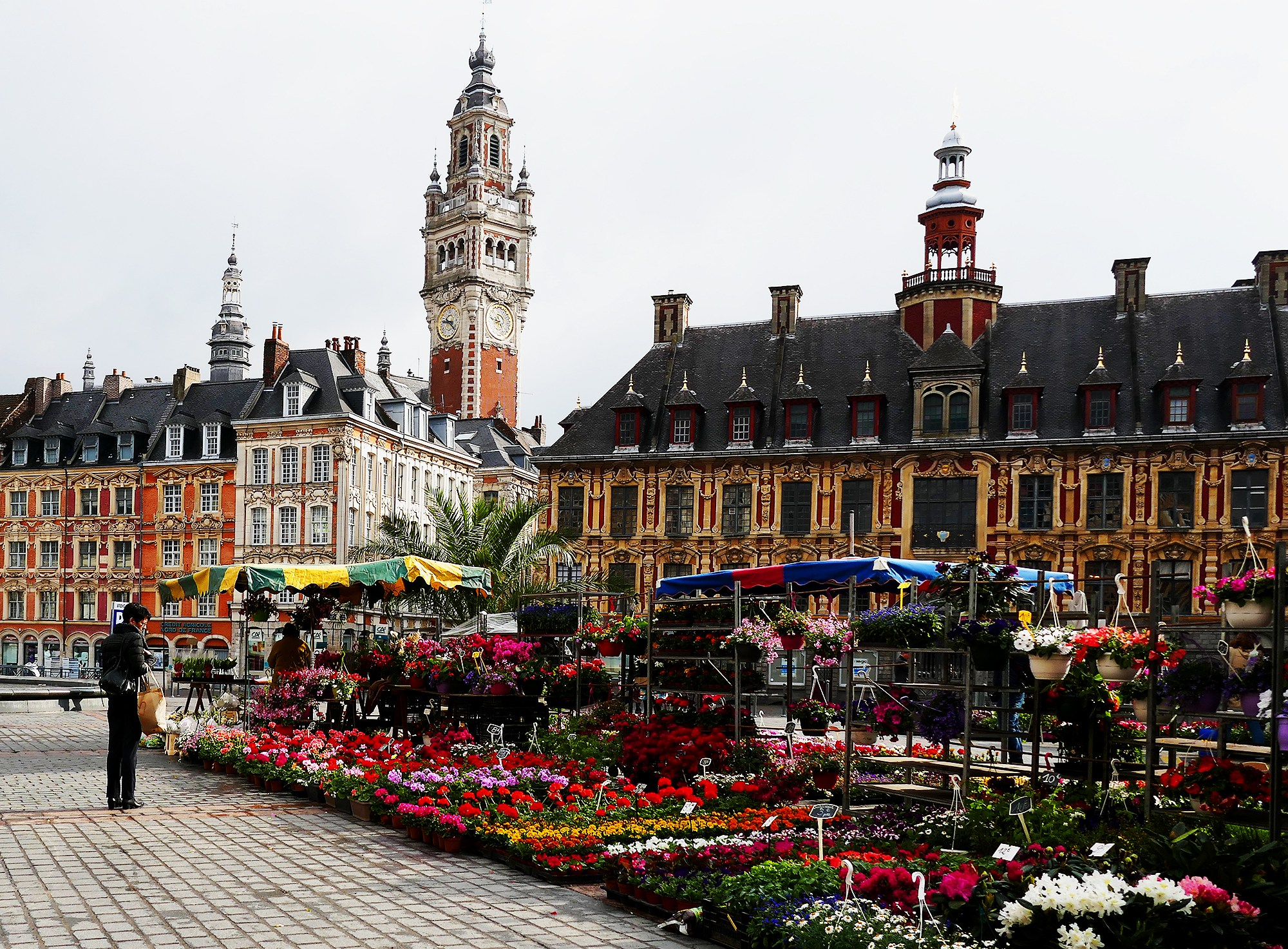 We're Going on an Excursion to Lille, France!
